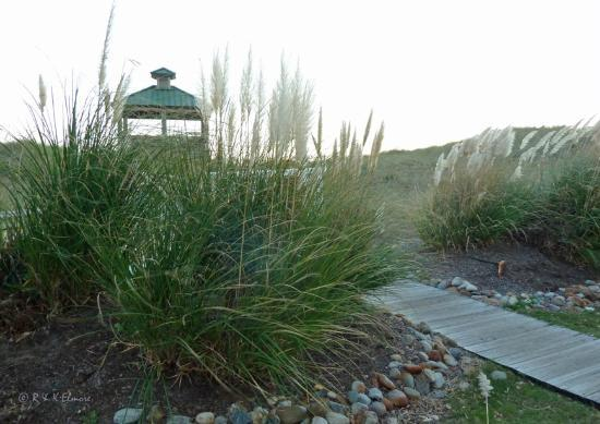 Shutters On the Banks : Gazebo atop dunes