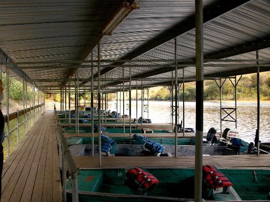 Jojo's Catfish Wharf: Boat's at Jack's Fishing Resort