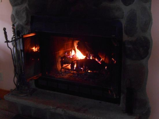 Blue Rose Cabins: our cozy fireplace