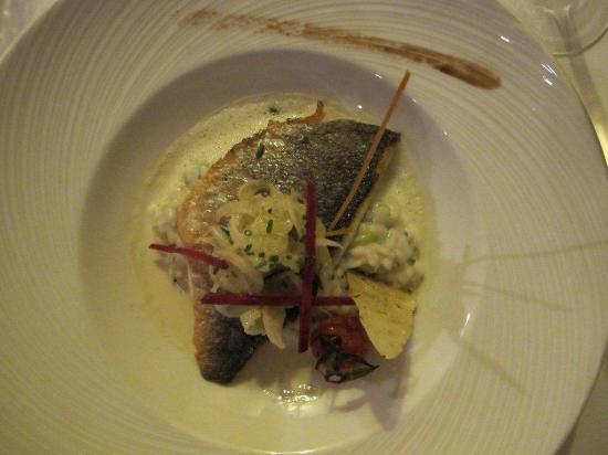 Auberge de la Chevre d'Or: Filet de maigre frais sur un risotto, jus de yuzu