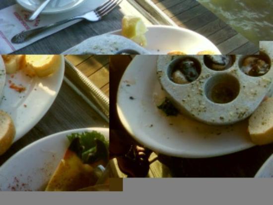 Dolphin Bar & Shrimp House : Escargot, above average but not garlicky enough for me