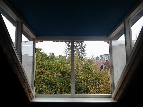 Casa Kanela: Despertar entre arboles