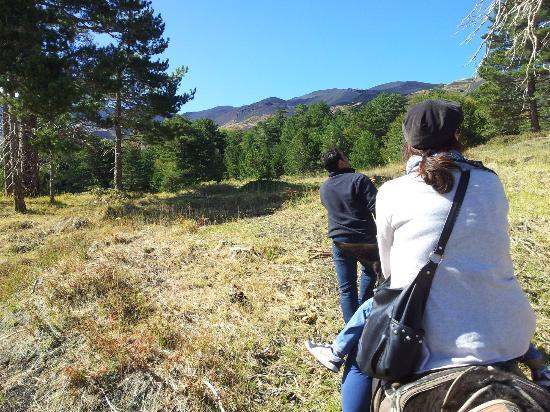 Etna Donkey Trekking: passeggiando