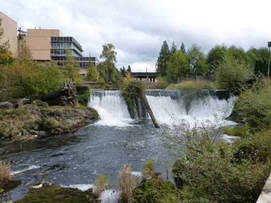 ‪‪Tumwater‬, واشنطن: Falls Terrace View of Tumwater Falls