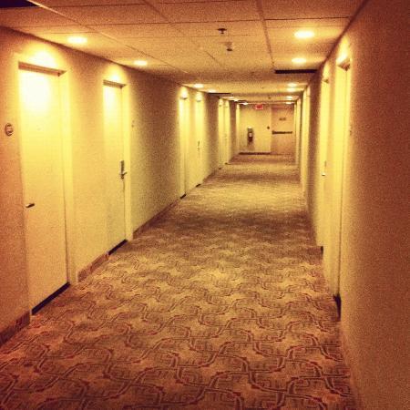 San Juan Airport Hotel : Corridor
