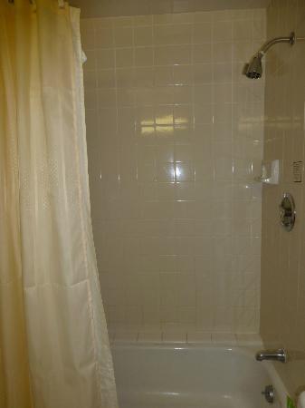 Hyatt Regency Los Angeles International Airport: Shower