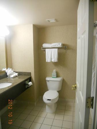 Holiday Inn Express Athens: Bathroom