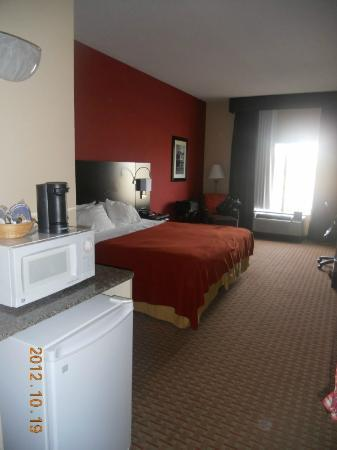 Holiday Inn Express Athens: Room