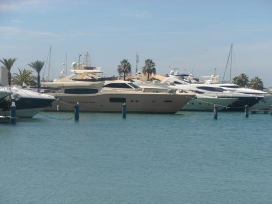 Vila Galé Ampalius: Marina