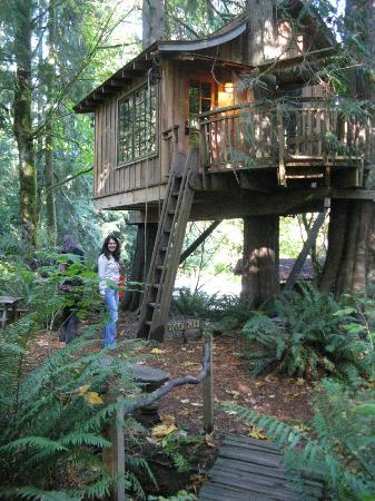 Treehouse Point : The Upper Pond with easy access to the parking lot, lodge, shower and restrooms. Ideal for us.