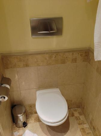 Holiday Inn Sandton - Rivonia Road: Toilet