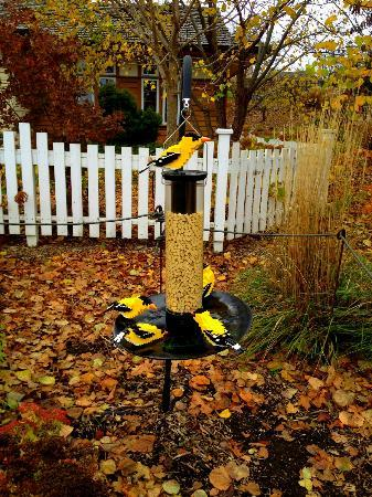 Reiman Gardens: Bird feeder Lego sculpture