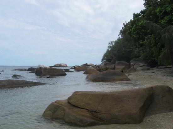 Fitzroy Island, أستراليا: Fitzroy Island 