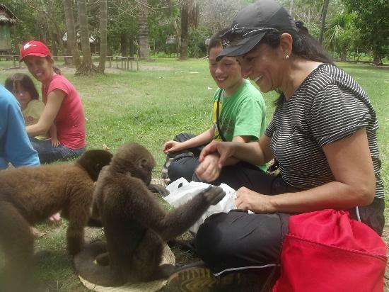 Amazon Reise Eco Lodge: Jugando con los monos