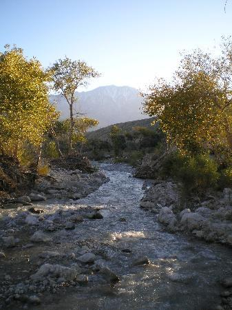 Casa de los Desperados: The river is just across a country road from the lodge