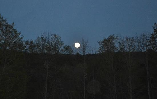 Maple Leaf Inn : We were there for the Super Moon in May