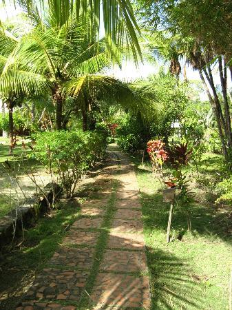 Mango Creek Lodge: Path through the gardens