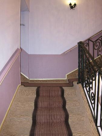 Danieli Hotel: Stairwell to rooms (no elevator)