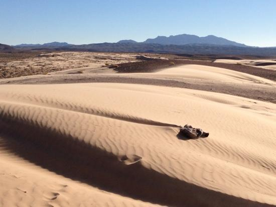 Apex / Nellis Sand Dunes where can go with Las Vegas Rock Crawlers