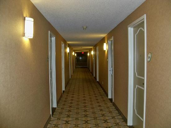 La Quinta Inn Buffalo Airport: Hallway on second floor.