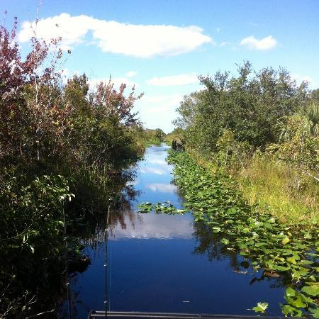 Old Florida Airboat Tours and Guide Service : airboat ride