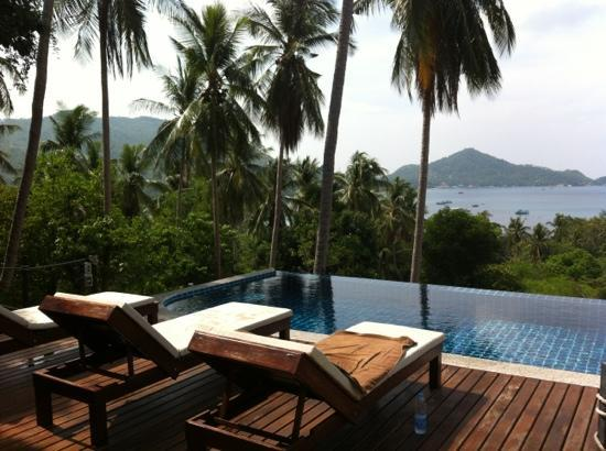 Koh Tao Heights Boutique Villas: pool with a view