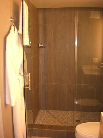 Hotel Paradox: Shower