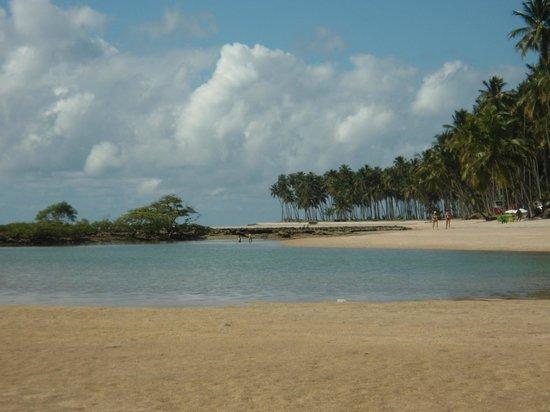Carneiros Beach: Visão do Paraíso