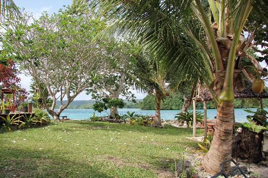 Oyster Island Resort: Oyster Island