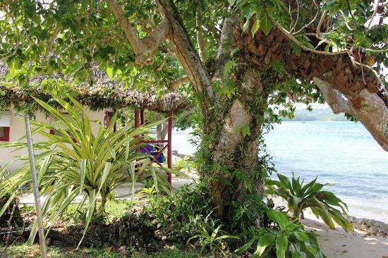 Oyster Island Resort: Our bungalow
