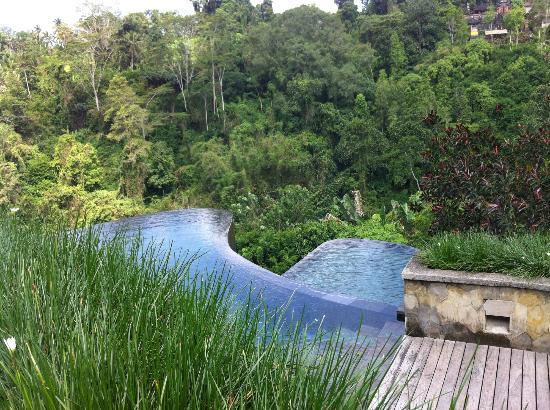 Hanging Gardens of Bali: Main Pool