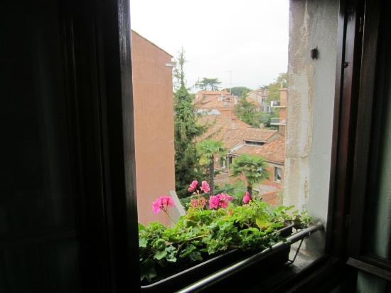 Palazzetto da Schio: View from living room