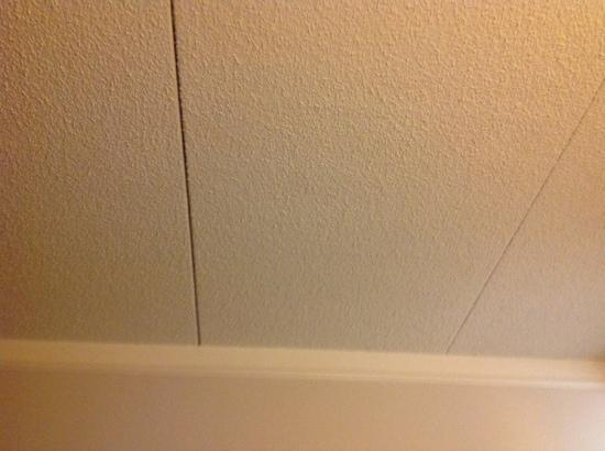 La Quinta Inn & Suites Tacoma Seattle: weird ceiling