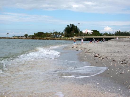 Blind Pass Beach Sanibel Island 2018 All You Need To
