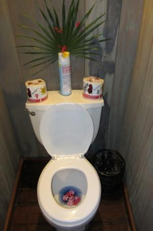 Portofino Beach Resort: even the toilet was decorated