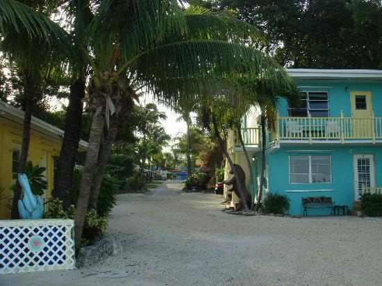 Sunset Cove Beach Resort: View From Beach Up the Driveway
