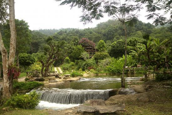 Tharnthong Lodges: A view of the resort area