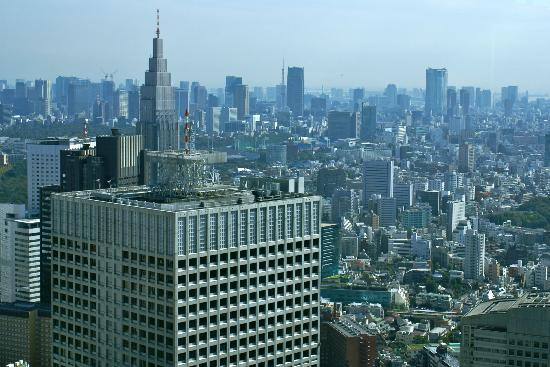 Tokyo Metropolitan Government Office: View from south tower