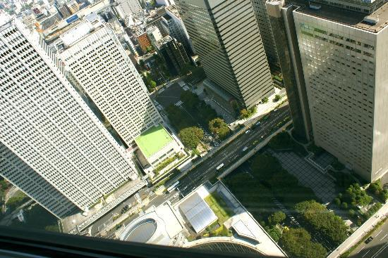 Tokyo Metropolitan Government Buildings: View looking down from 45th flr