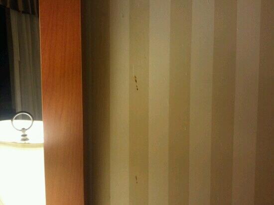 Quality Inn : mystery splatters on wall