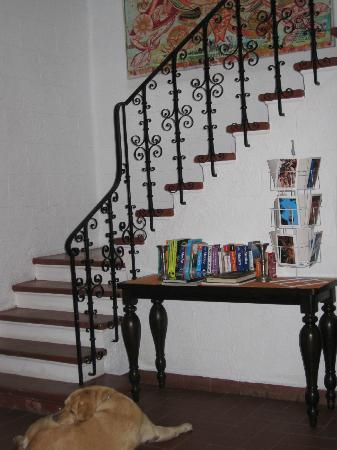 The Red Tree House: pretty stairwell, mexico travel guides on table and postcards