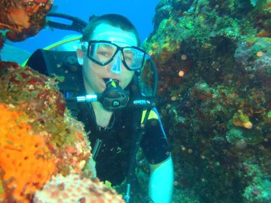 Nautilus Diving & Training Center: one of the ten dives photo by clemente