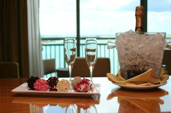 The Cove at Atlantis: 15yr Anniversary
