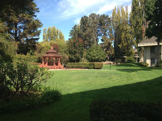 Sheraton Sunnyvale: garden