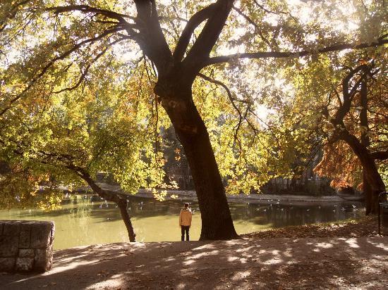 Varosliget : City Park