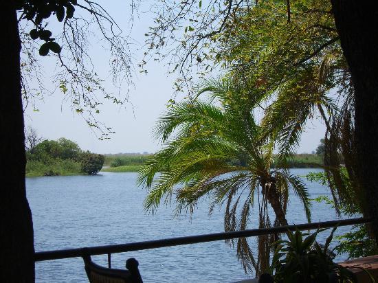 Chobe Safari Lodge: Chobe river