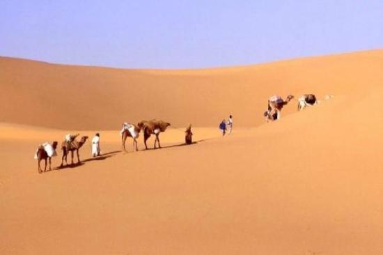Ouargla, Algeria: جرب اكتشاف الصحراء على متن الجمال اكيد ستكون تجربة رائعة