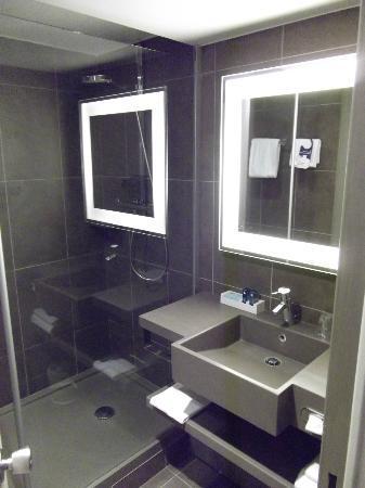 Novotel Strasbourg Centre Halles : Bathroom
