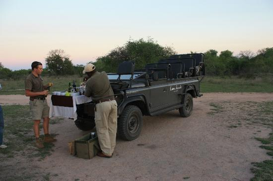 Lion Sands River Lodge: Jeeps used for Game Drives - open top for great viewing, very comfortable