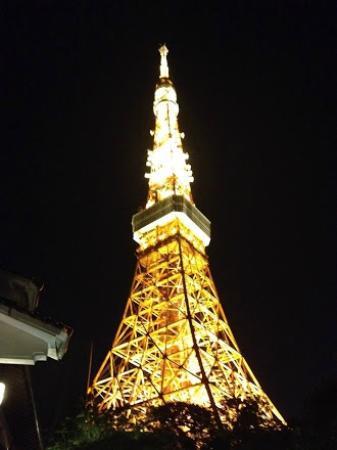 東京 芝 とうふ屋 うかい, 素晴らしい夜景